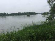 Pattons Po River