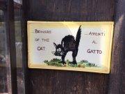 Al Gatto / Le chat